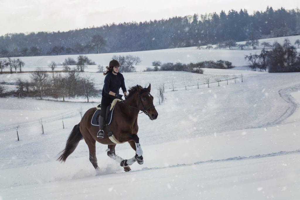 Durch den Schnee reiten
