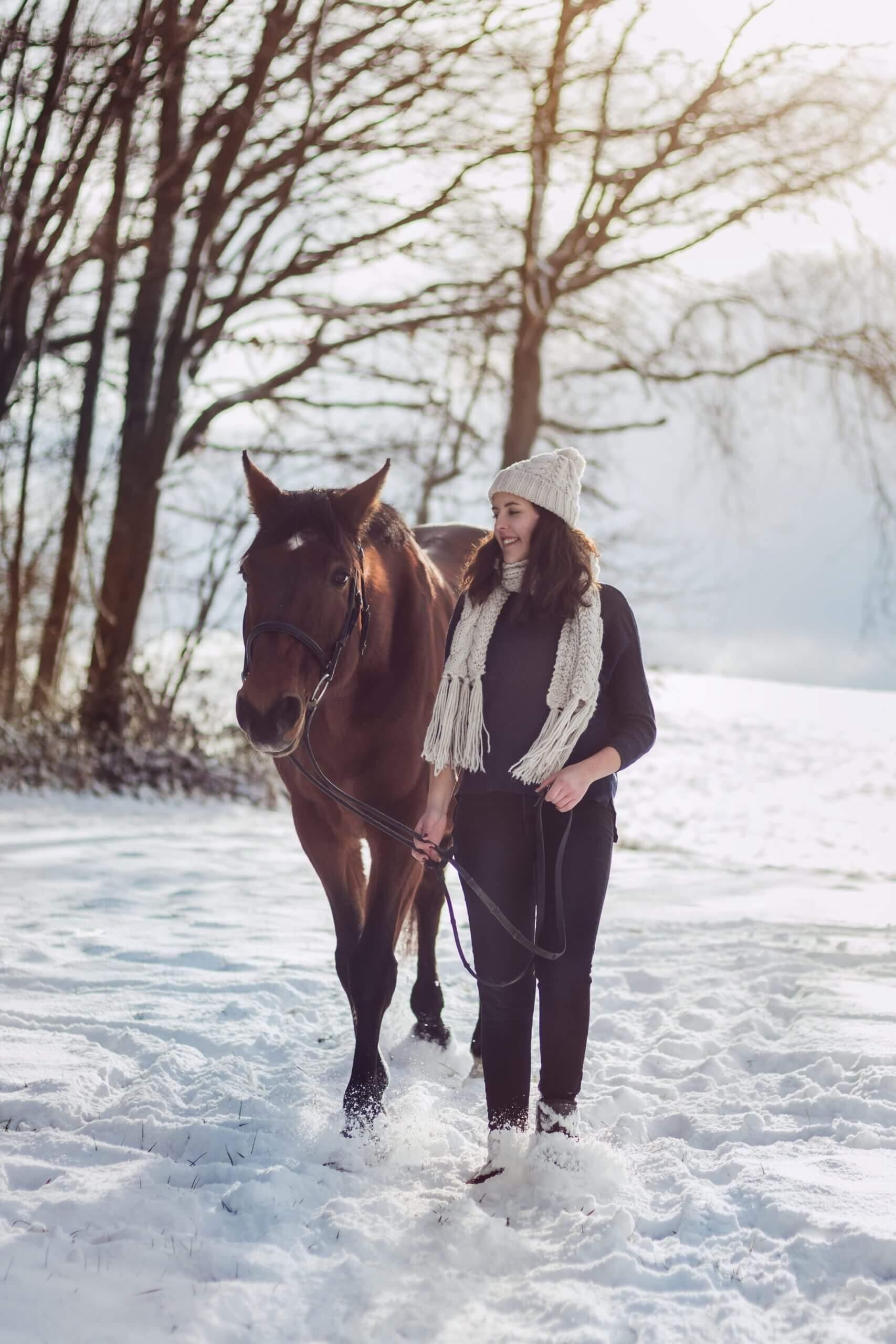 Schneespaziergang mit einem Pferd